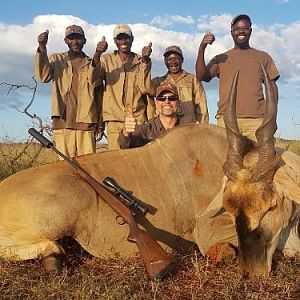 South Africa Hunting Eland