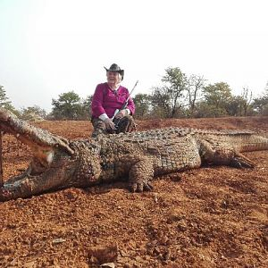 Hunting Crocodile in South Africa