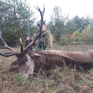 Romania Hunting Red Stag