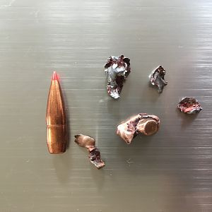 Hornady A-MAX .308 Win. Bullet Performance