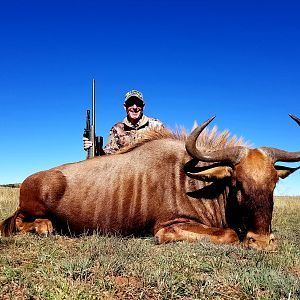 Hunt Golden Wildebeest in South Africa