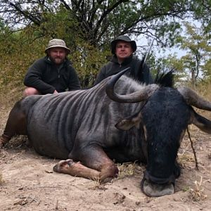 Zimbabwe Hunt Blue Wildebeest