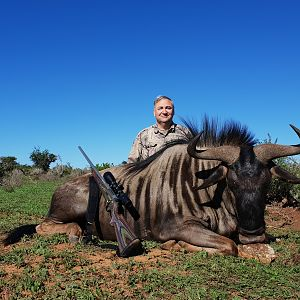Blue Wildebeest Hunting South Africa