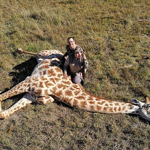 Giraffe Hunt South Africa