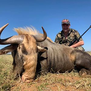 Hunting Kings Wildebeest in South Africa