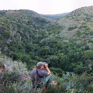 Out looking for Bushbuck