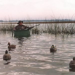 Hunting Duck & Geese in Argentina