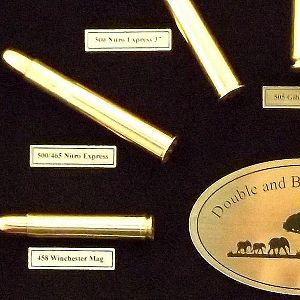 African Double & Bolt Action Cartridge Board from African Sporting Creations