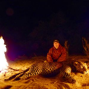 Hunt Leopard in Zimbabwe