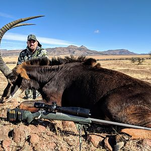 Hunting Sable in South Africa