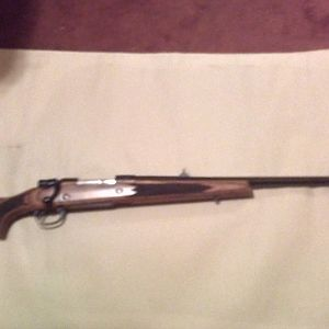 Remington 798 in .375 H&H Rifle