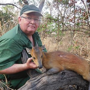 Red-flanked Duiker Hunt Cameroon
