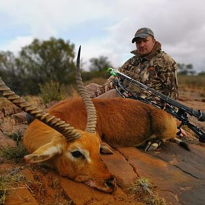 South Africa Bow Hunt Red Lechwe