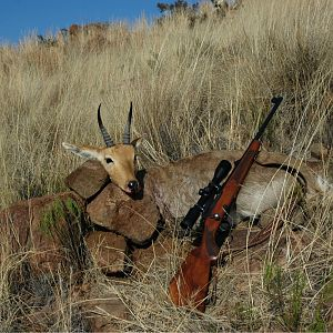 Hunting Mountain Reedbuck in South Africa