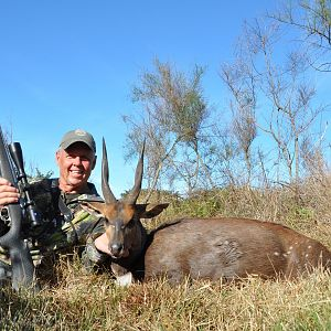 South Africa Hunt Bushbuck