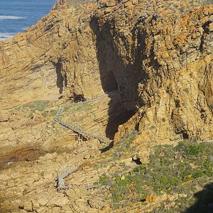 Human Origin Cave Mossel Bay South Africa