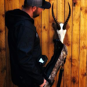 White Blesbok European Skull Mount Taxidermy