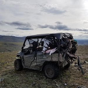 Alaska USA Hunt Caribou
