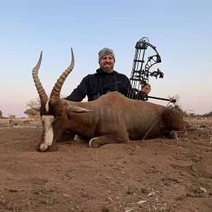 Blesbok Bow Hunt South Africa
