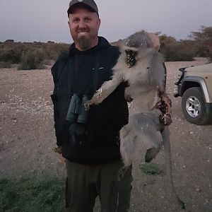 Vervet Monkey Bow Hunting South Africa
