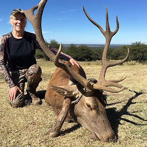 Argentina Hunting Red Stag