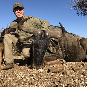Namibia Hunt Blue Wildebeest
