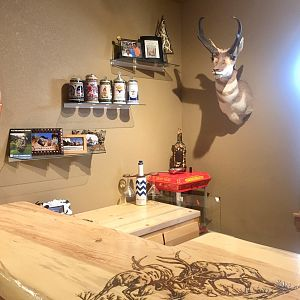 Pronghorn Shoulder Mount Taxidermy