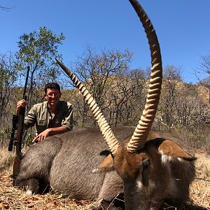 Hunting Waterbuck in Zimbabwe