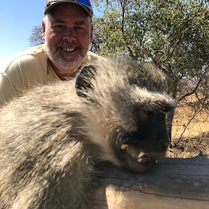 Hunting Vervet Monkey in South Africa