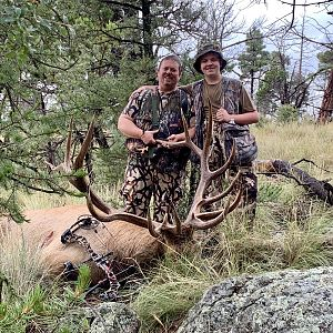 Bow Hunt Elk in New Mexico USA