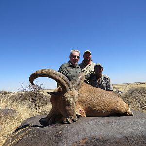 Hunting Aoudad in South Africa