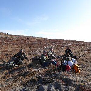 Hunt Caribou in Greenland