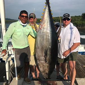 Fishing Yellowfin Tuna in Panamá