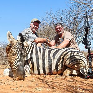 Bow Hunt Burchell's Plain Zebra in Namibia