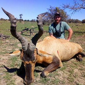 Hunting Red Hartebeest in South Africa
