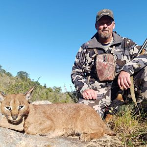 South Africa Hunt Caracal