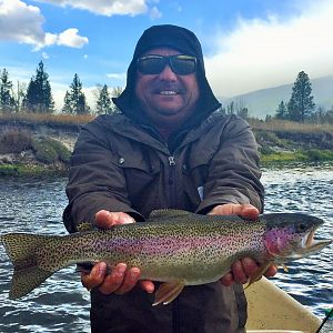 Fly Fishing Rainbow Trout in Montana & Idaho USA