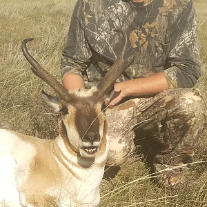 Hunting Pronghorn in Alberta USA