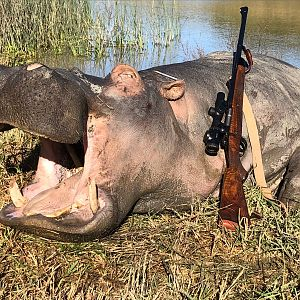 Hippo Hunting South Africa