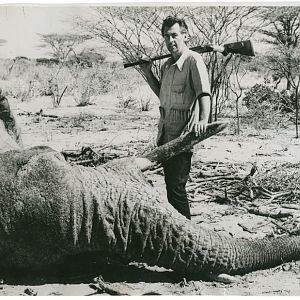 Stewart Granger Elephant Hunting with his .577