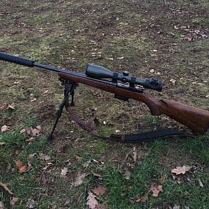 CZ527 American Rifle in .223 Rem