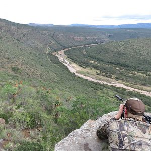 Glassing Game & Hunting South Africa