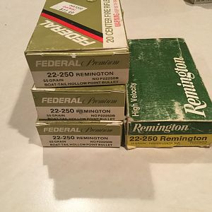 22-250 Remington Ammo