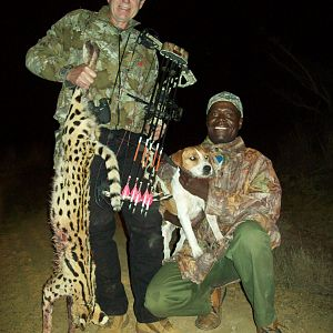 South Africa Bow Hunt Serval