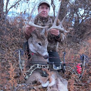 White-tailed Deer Bow Hunt Montana USA