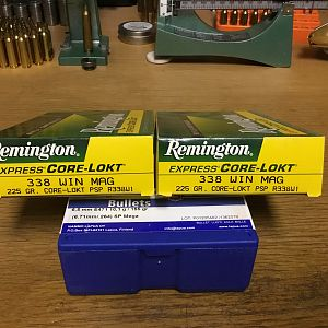 Remington 338 win mag 225 grain PSP's