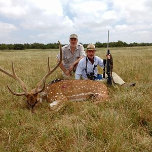 Axis Deer Hunt Argentina