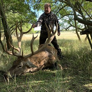 Hunting Red Stag in Argentina