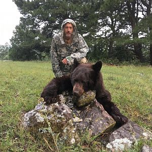 Hunting Black Bear in New Mexico USA