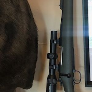 AHR .416 Ruger Rifle